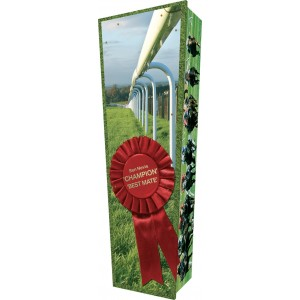 The Champion (Horse Racing) - Personalised Picture Coffin with Customised Design.